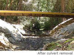 Road Restoration