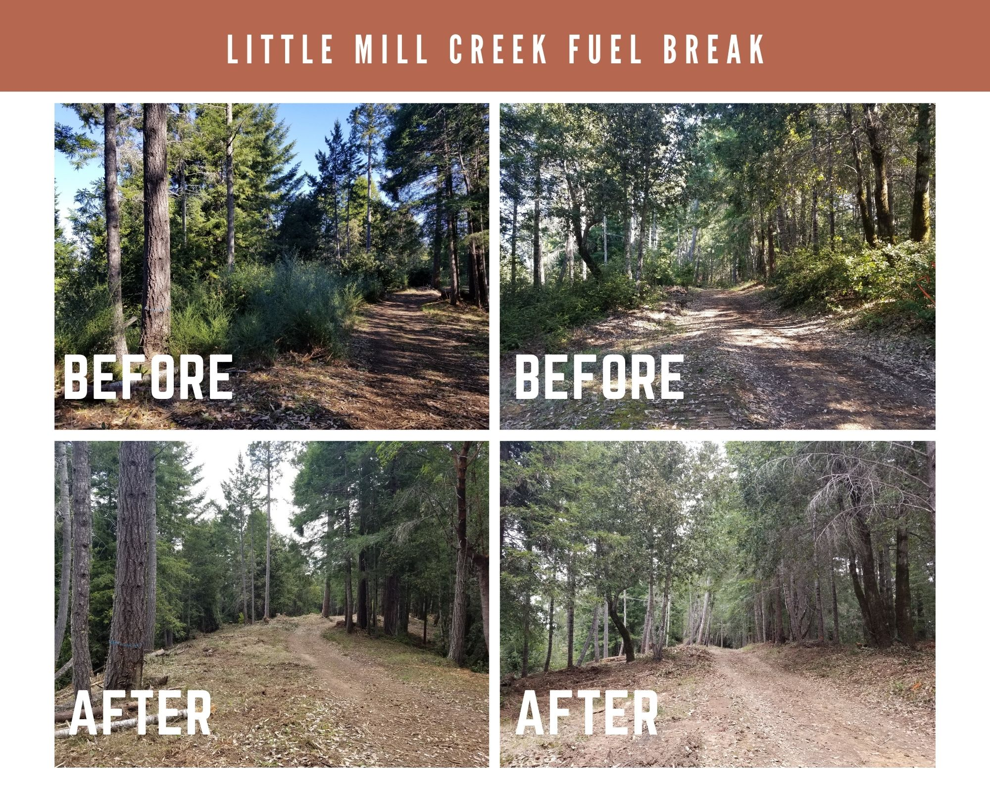 Little Mill Creek fuel break before and after